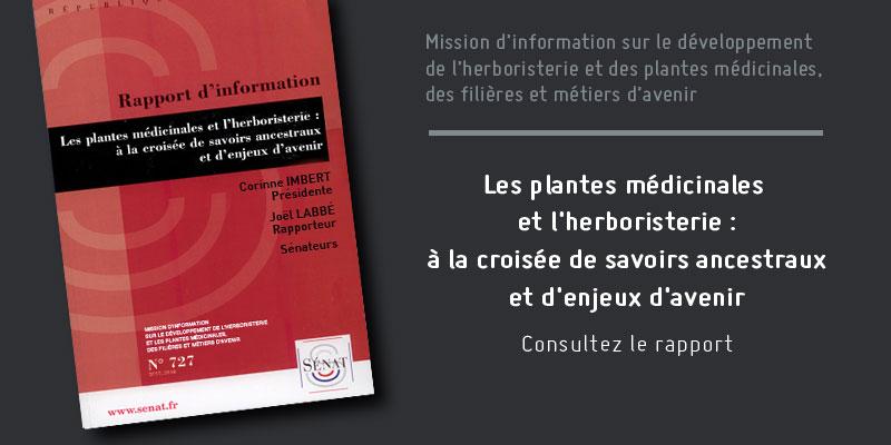 Rapport herboristerie