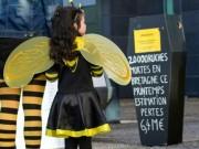 Marche des apiculteurs à Rennes